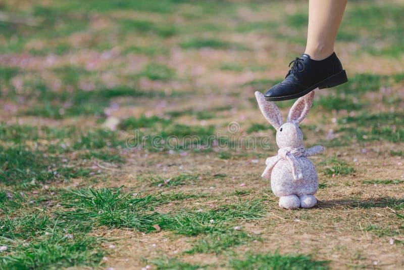 Het groene gras heeft roze bloemblaadjes en een marionettenkonijn, en één voet op het konijn royalty-vrije stock afbeeldingen