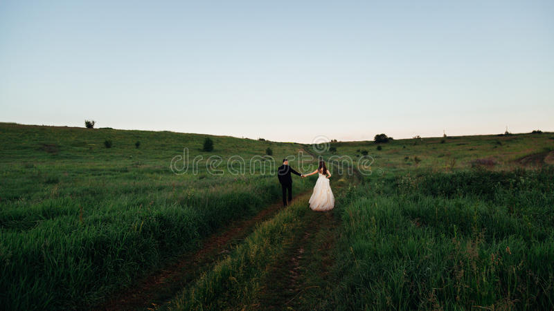 Het groene gras omringt newlwyeds hand in hand het lopen stock fotografie