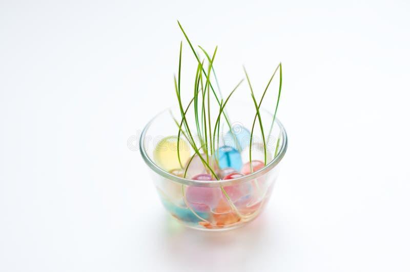 Het groene Groeien van het Gras in een Schotel met Marmer stock fotografie