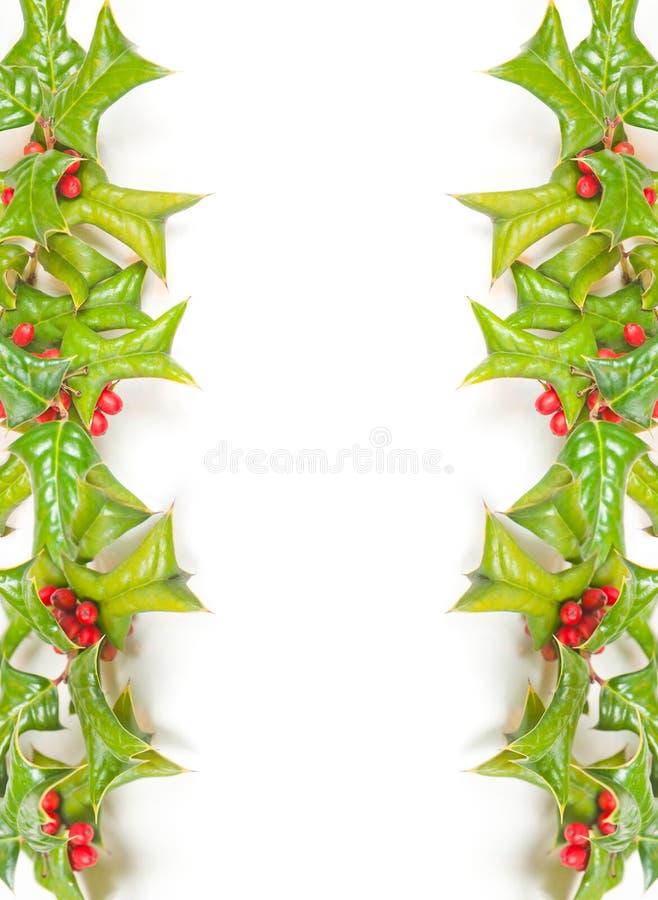 Het groene kader van Kerstmis met studioschot stock afbeelding