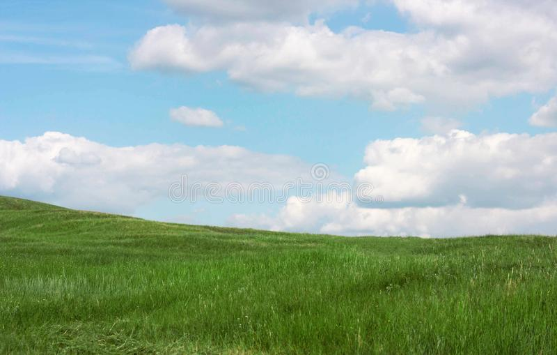 Het groene landschap van het grasgebied met wolken en blauwe hemel stock fotografie