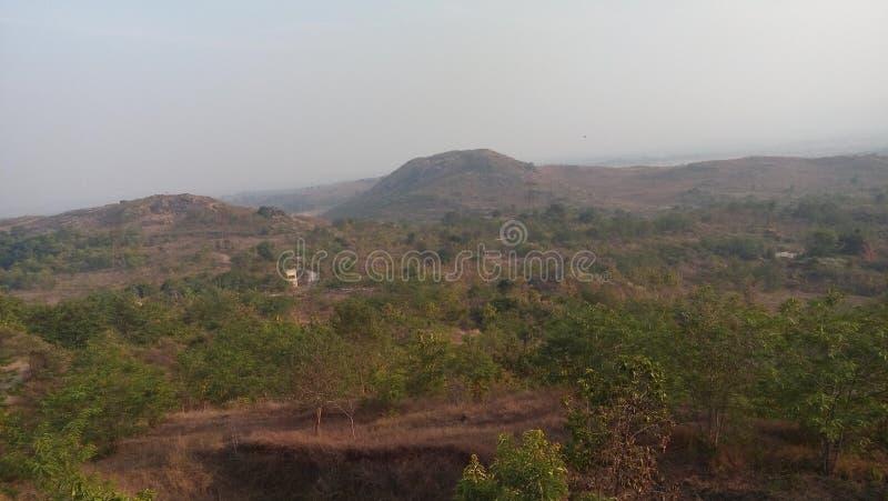Het groene leven van Jamshedpur stock afbeeldingen
