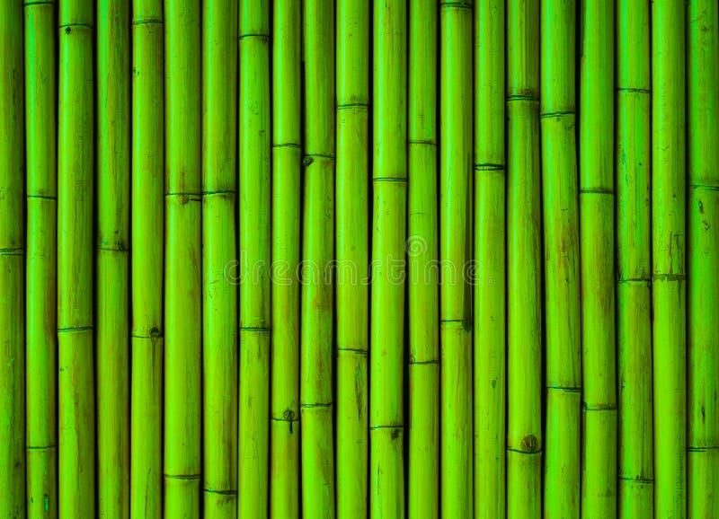 Het groene patroon bamboe van de achtergrondboominstallatie royalty-vrije stock fotografie