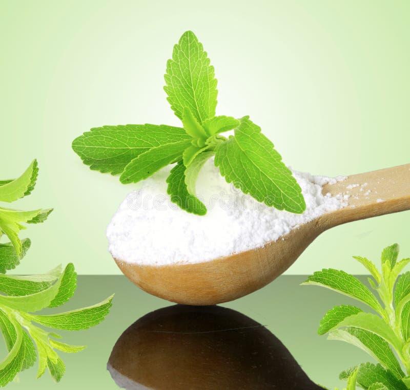 Het groene poeder van Stevia en van het uittreksel in houten lepel op groene achtergrond stock foto's