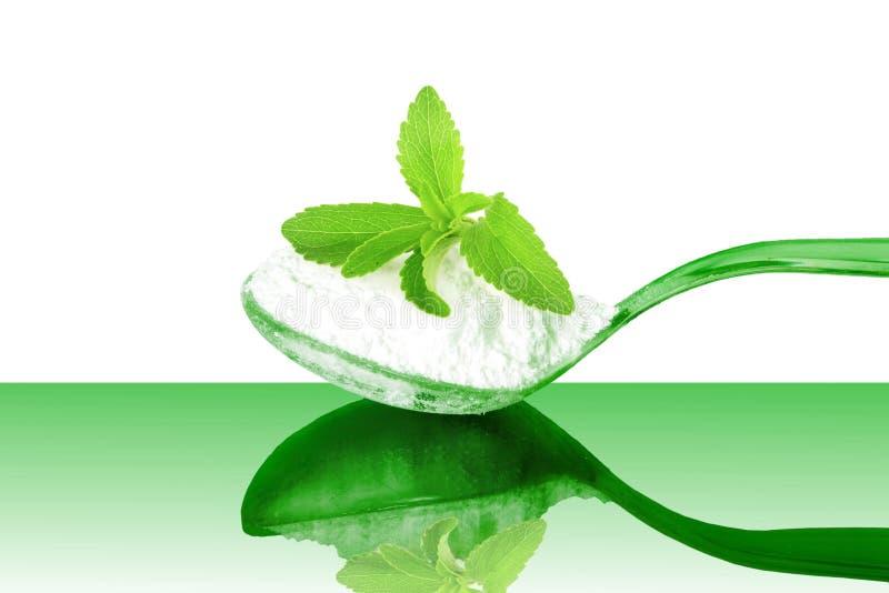 het groene poeder van Stevia en van het uittreksel in lepel op witte achtergrond royalty-vrije stock afbeeldingen