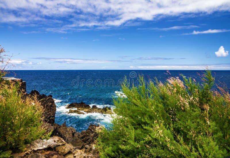 Het groene strand van madera, de zomer tropische kust, Portugal royalty-vrije stock foto