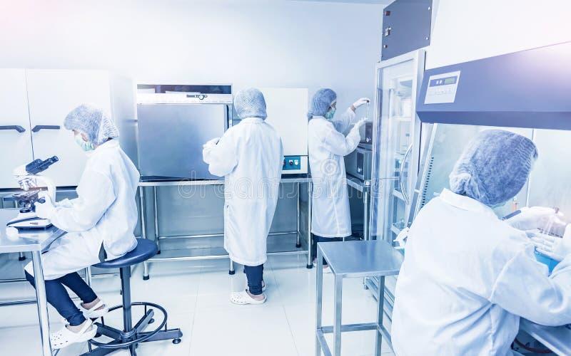 Het groepswerk die van de microbiologiewetenschappers in laboratorium werken royalty-vrije stock foto