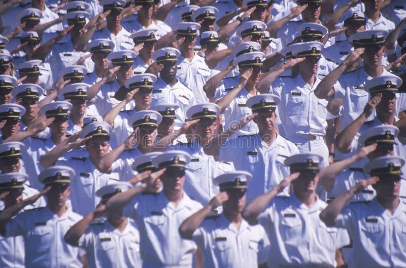 Het Groeten van zeelieden stock foto