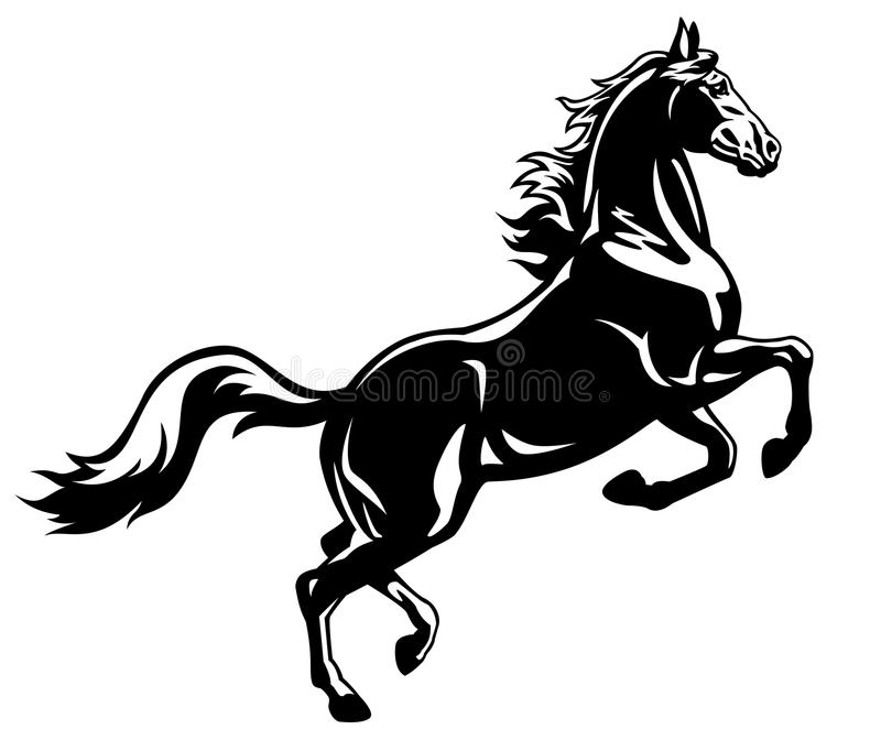 Het grootbrengen paard zwart wit stock illustratie