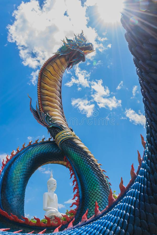 Het grote concrete symbool van Phaya Naga, serpentdraak met de grote achtergrond van Boedha, het openbare bezit in Wat Phumanorom stock afbeelding