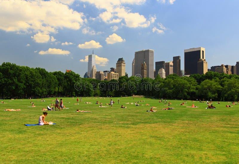 Het grote Gazon in Central Park stock foto