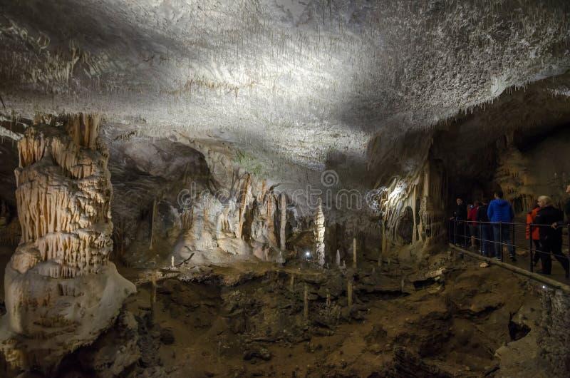 Het grote hol met stalactieten en de stalagmieten in Postojna hollen, Slovenië, Europa uit stock afbeelding
