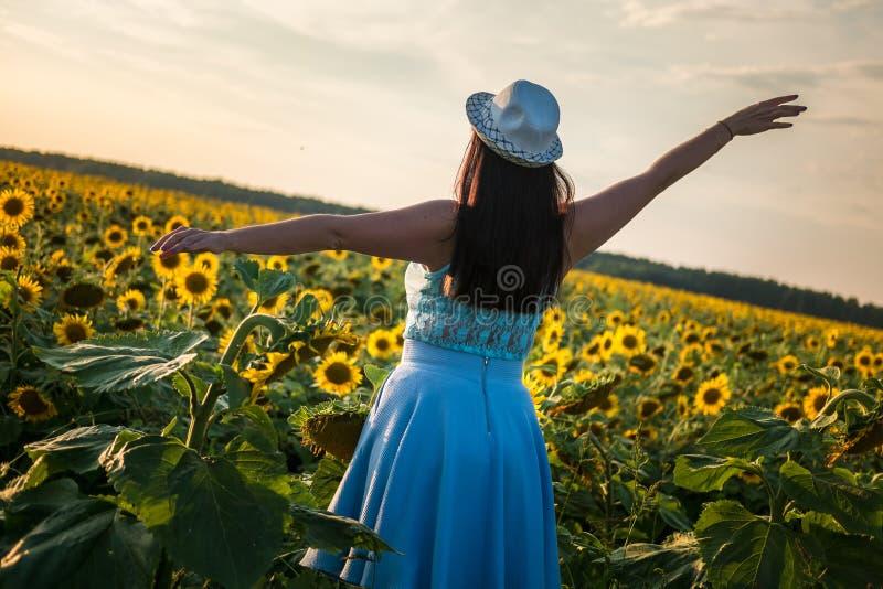 Het grote model van het groottemeisje in een blauwe kledingsbladeren met hoed op gebied van zonnebloemen op de zonsondergang Volg stock afbeelding