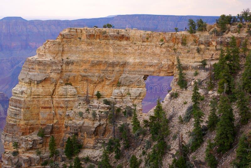 Het grote Nationale Park van de Canion stock foto's