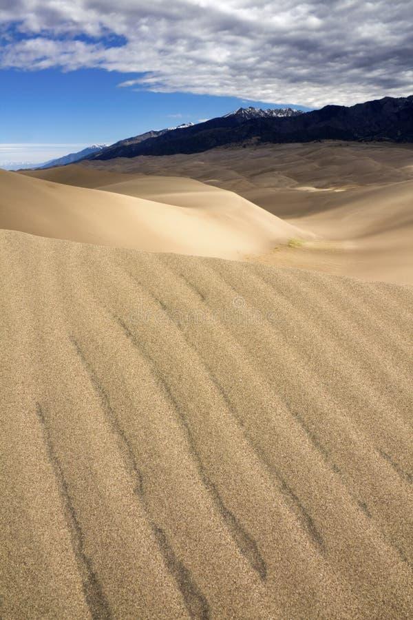 Het grote Nationale Park van de Duinen van het Zand stock foto