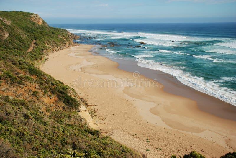 Het grote Nationale Park van Otway langs de Grote Oceaanweg, Australië royalty-vrije stock foto