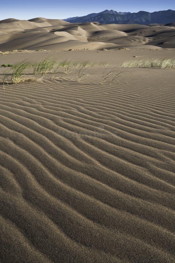 Het grote Nationale Park van Zandduinen in Zuidelijk Colorado stock foto's