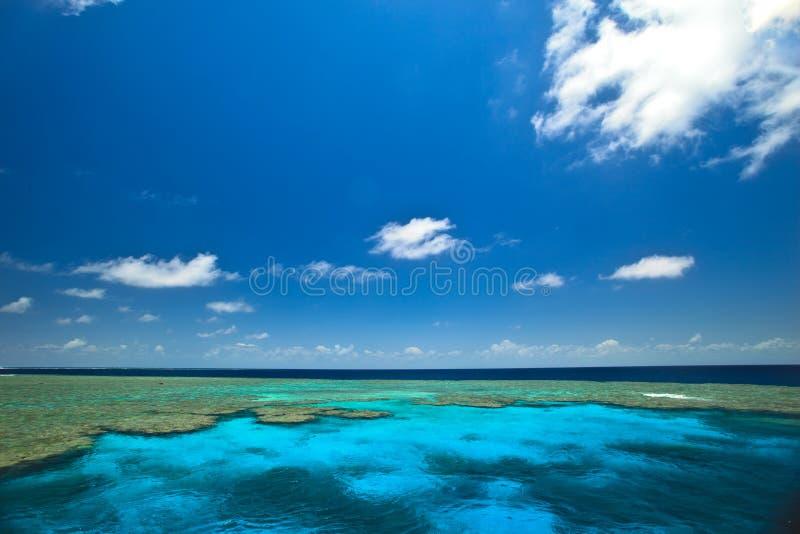 Het grote Zeegezicht van de Tuinen van het Tweekleppige schelpdier van het Barrièrerif royalty-vrije stock foto