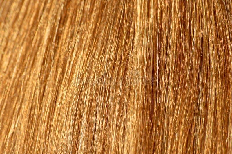Het haar van de blonde stock afbeeldingen