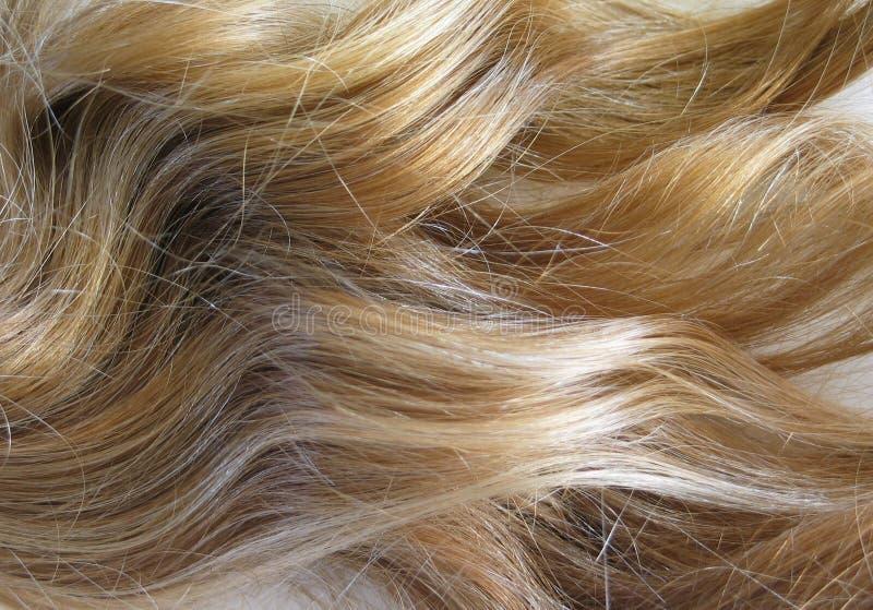 Het Haar van de blonde stock fotografie