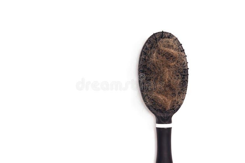Het haar van de kamborstel met haarverlies op witte achtergrond De ruimte van het exemplaar royalty-vrije stock foto