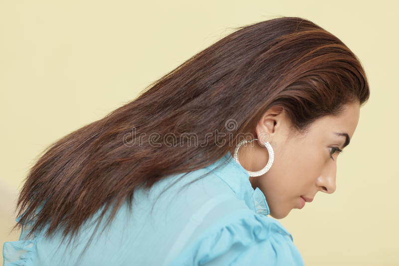 Het haar van wijfjes stock foto's