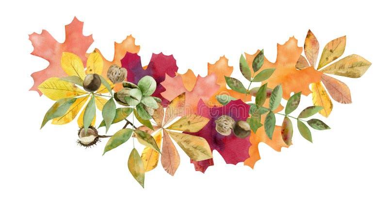 Het hand geschilderde malplaatje van het waterverfmodel clipart van de herfstbladeren stock illustratie