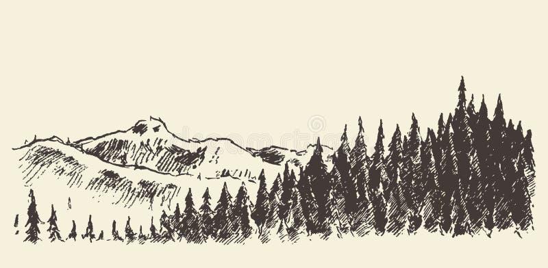 Het hand getrokken bos van de landschapsspar en weideschets vector illustratie