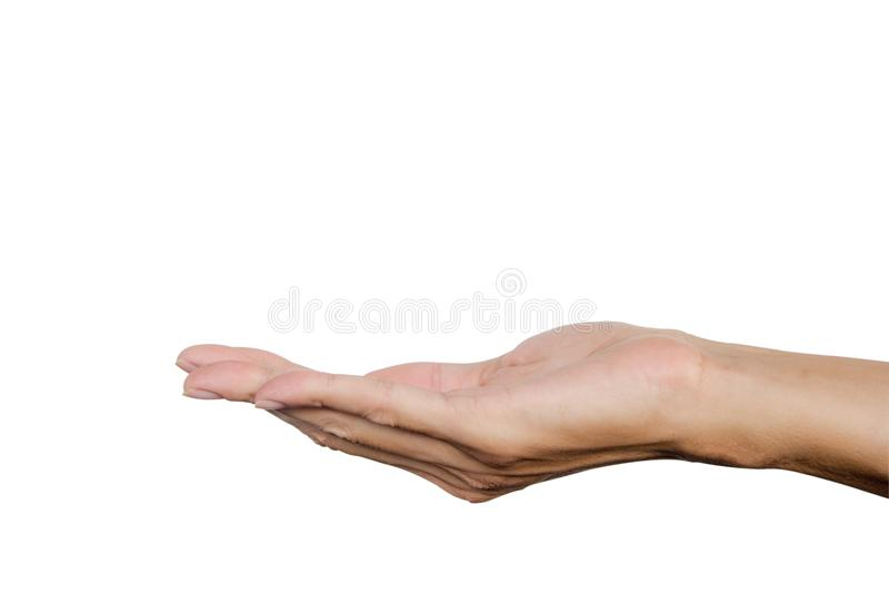 Het handgebaar stelt als holding iets op palm open op witte achtergrond wordt geïsoleerd die Knippende weg stock afbeelding