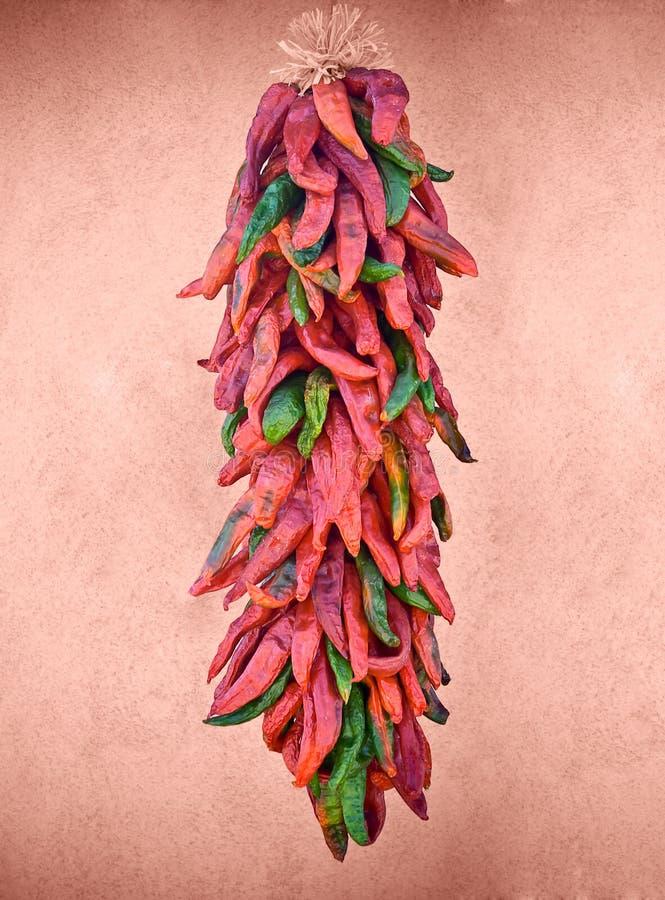 Het hangen chilis stock foto