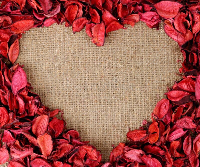 Het hart gaf frame gestalte dat van rode bloemblaadjes wordt gemaakt royalty-vrije stock afbeeldingen