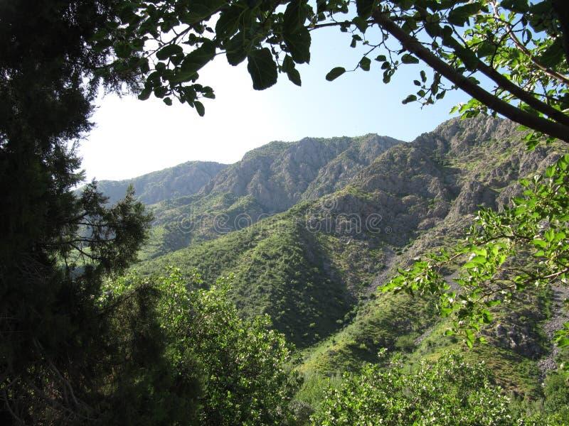 In het hart van de bergen stock afbeelding