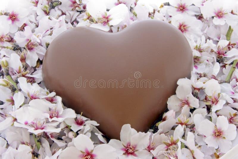 Het hart van de chocolade in een bed van bloemen stock foto