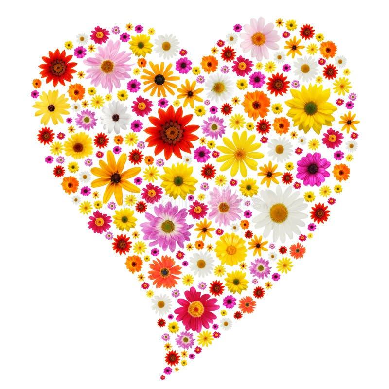 Het hart van de lente stock afbeelding