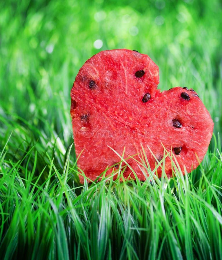 Het hart van de watermeloen op groen gras het concept van de valentijnskaart stock afbeelding - Groen behang van het water ...