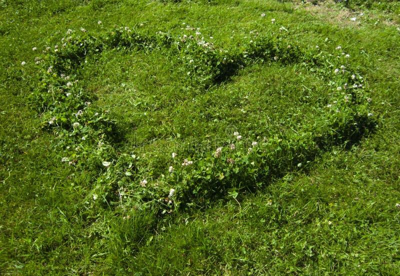 Het hart van het gras royalty-vrije stock foto