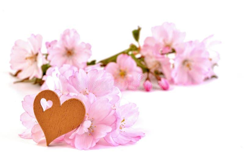 Het hart van liefdevalentine ` s stock foto's