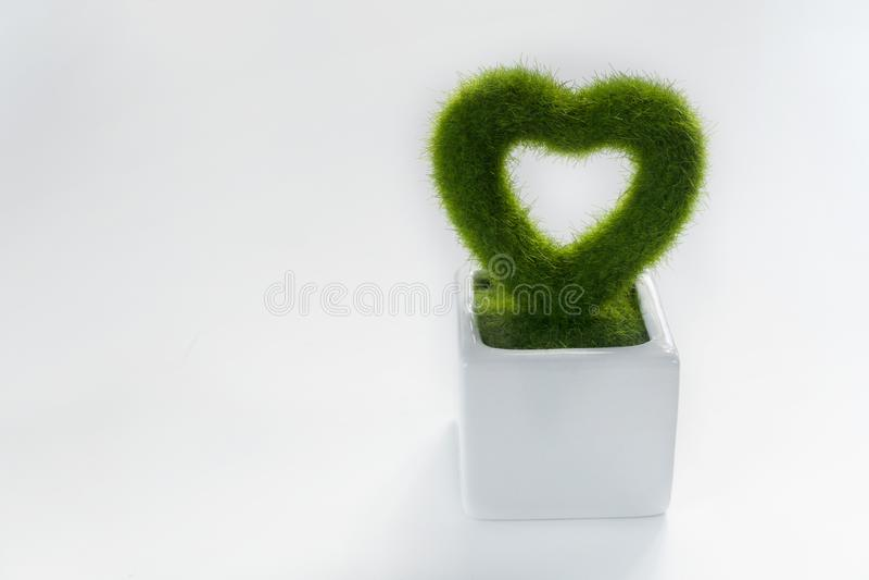 Het hart vormde plastic groene installatie op witte pot voor huwelijk of valentijnskaart witte achtergrond royalty-vrije stock afbeeldingen