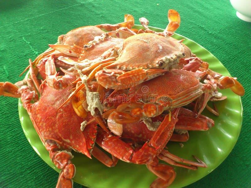 Het hebben van Vietnamese krabben voor lunch royalty-vrije stock foto's