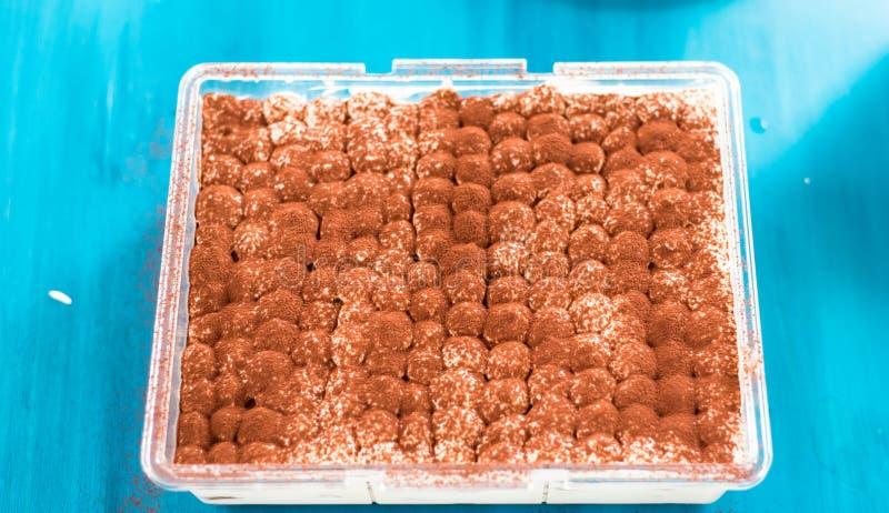 Het heerlijke Culinaire traditionele zoete dessert van het tiramisudessert royalty-vrije stock foto