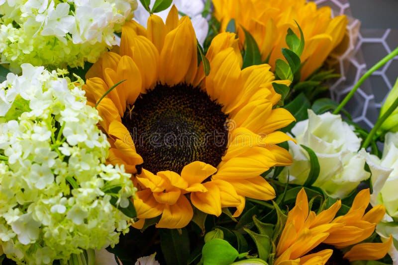 Het heldere boeket met gele zonnebloemen en nam, roze eustoma en groene viburnum bloemenachtergrond toe stock afbeelding