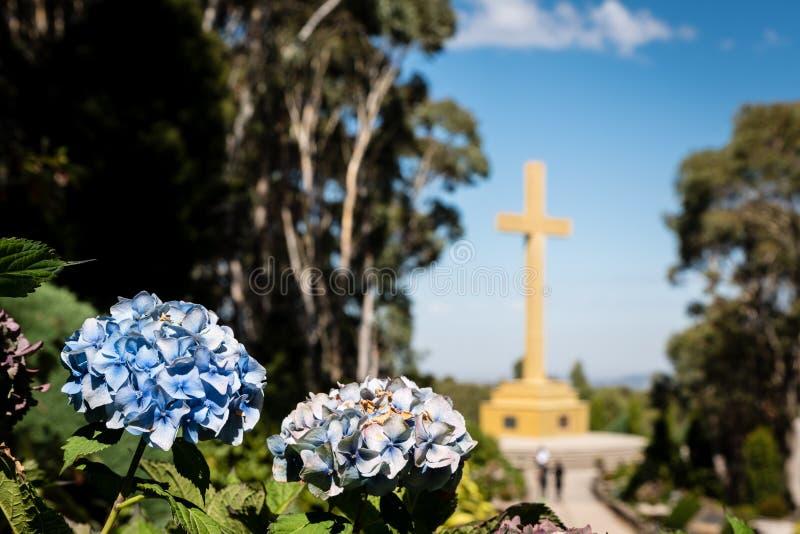 Het Herdenkingskruis van MT Macedon met de voorgrond van de hydrangea hortensiabloem royalty-vrije stock afbeeldingen