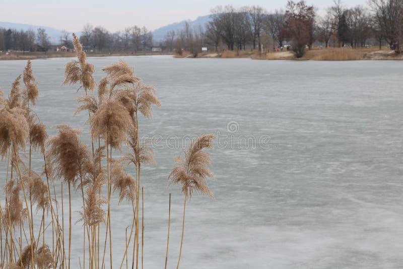 Het herinneren zich vorige winter wanneer het bevroren meer stock fotografie