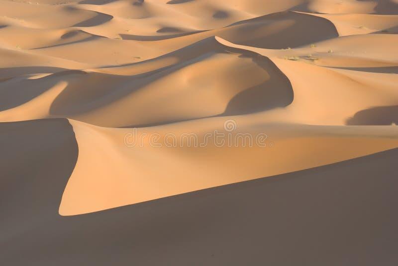 Het het verschuiven zand van de Sahara royalty-vrije stock afbeelding