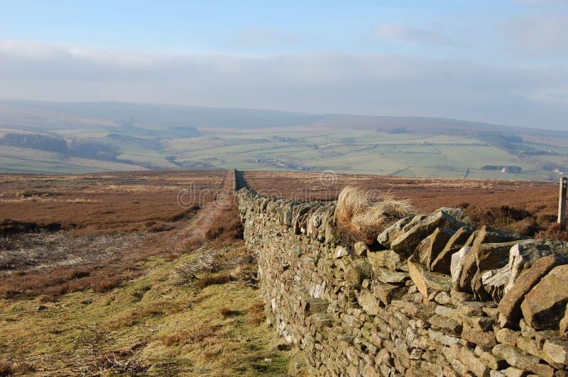 Het hoen van de droge steenmuur legt, Blanchland Northumberland vast stock foto's