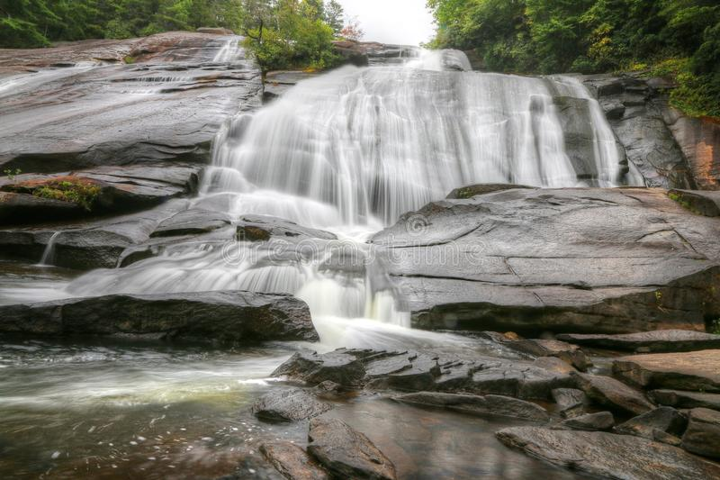 Het hoge Bos van de Staat van Dalingendupont royalty-vrije stock foto's