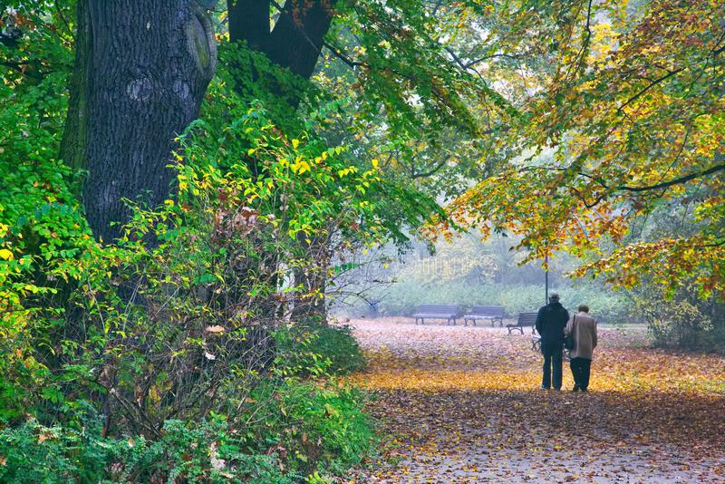 Het hogere paar genieten die in de herfstpark lopen stock foto's