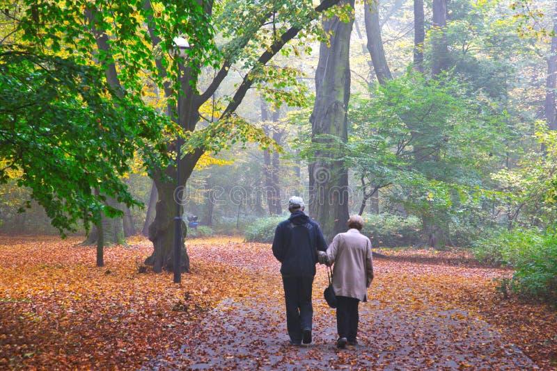 Het hogere paar genieten die in mistig de herfstpark lopen stock fotografie