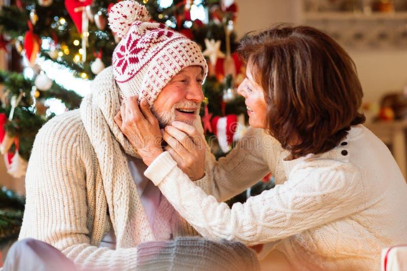 Het hogere paar voor Kerstboom het genieten van stelt voor royalty-vrije stock foto's