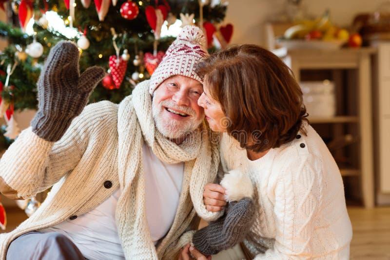 Het hogere paar voor Kerstboom het genieten van stelt voor stock afbeelding